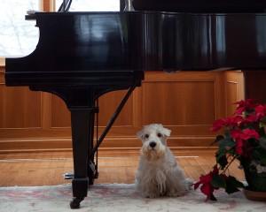 Nikolai under the piano. Photo Christian Steiner.