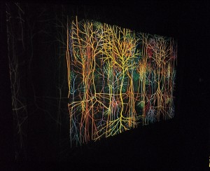 Andrew Carnie, Magic Forest