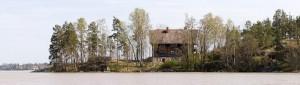 Sibelius' Home, Halosiennemi
