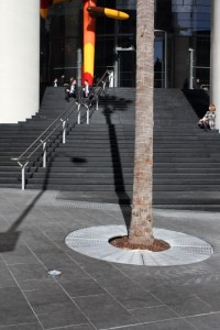 Newly colonised public space at 1 Bligh. Photo © 2011 Alan Miller.