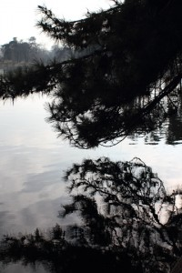 Lac inférieur, Bois de Boulogne, late February. Photo © 2012 Alan Miller.