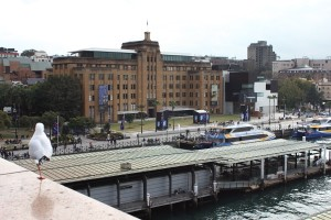 The MCA from the Cahill Expressway. Photo © 2012 Alan Miller.