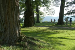 Under the Trees at Tanglewood. Photo © 2008 Michael Miller.